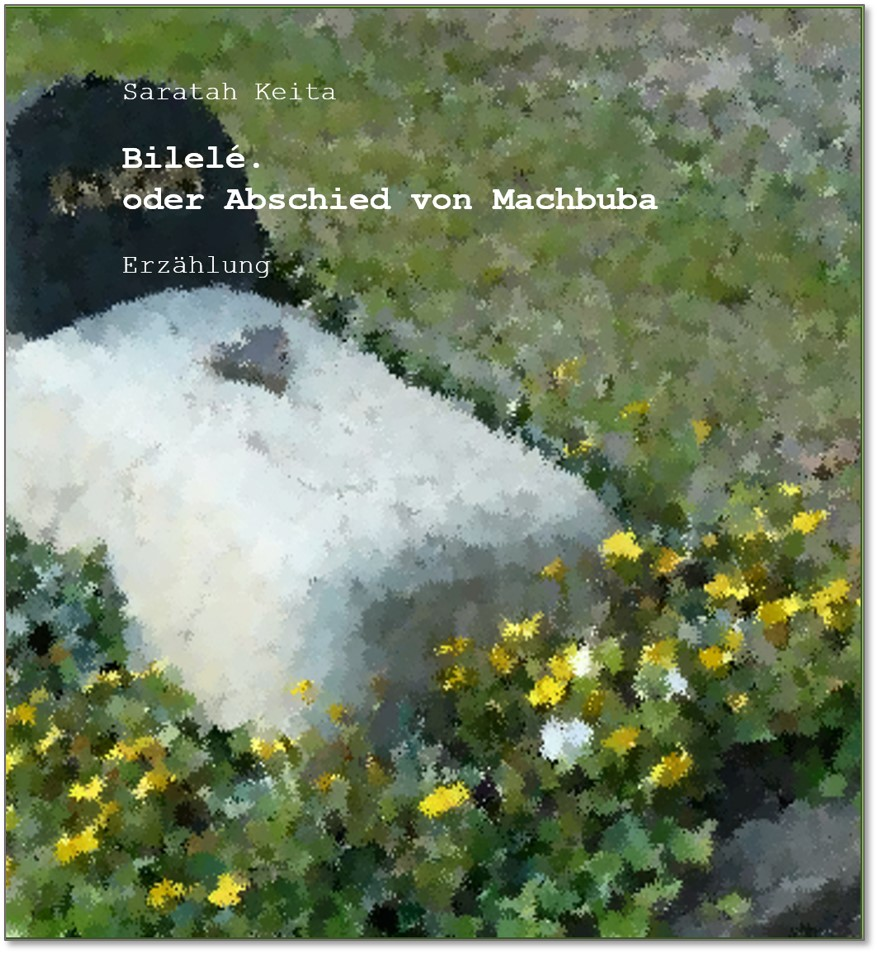 Cover Bililé oder Abschied von Machbuba.